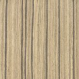 Edgebanding - #46QJ Zebrawood - Evolution HD