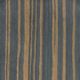 #31QJ Ebony Macassar - Evolution HD Veneer