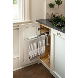 Three Prong Pull-Out Towel Bar