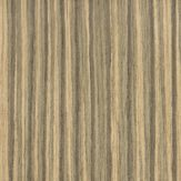 #4682 Zingana - Evolution HD Veneer