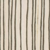 #5305 Creamy Zebrano - Evolution HD Veneer