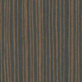 #8853 Ebony Stratus - Evolution HD Veneer