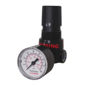"Piston Type Mini Regulator - 2-125 PSI, 1/4"" NPT"