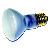 50W Replacement Bulb