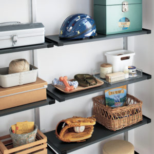ABS Resin Shelves
