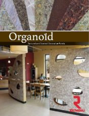 Organoïd