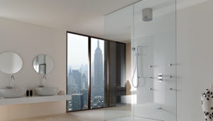 Frameless Shower Hardware