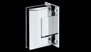 Glass Door Hinges for Shower and Cellar, Frameless