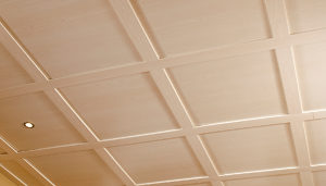 Embassy Suspended Ceilings